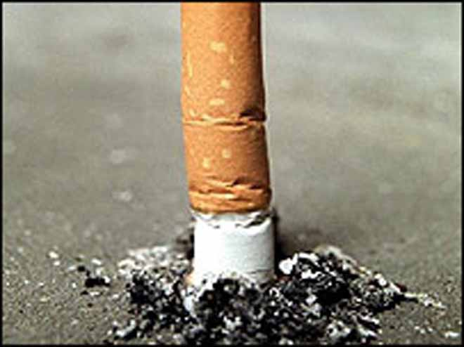 Smoking ban takes effect in New York's parks and beaches