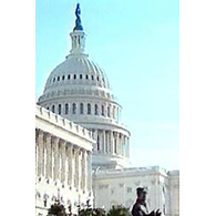 Congress,  U.S. govt agree on bill; $ 700  bn  to be given in stages