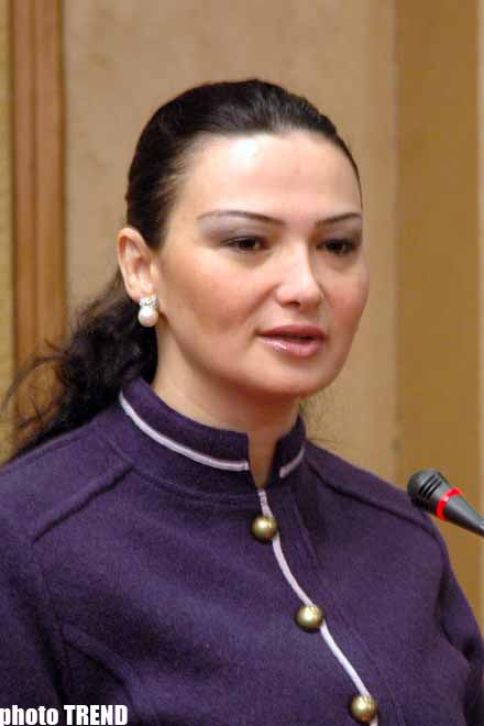 Azerbaijani Parliamentarian Requires Council of Europe to Assess Actions of Armenians