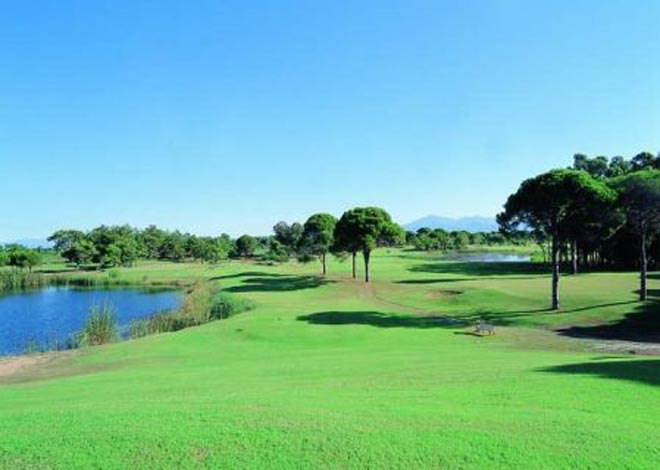 Latvia Wishes to Open Golf Club in   Baku