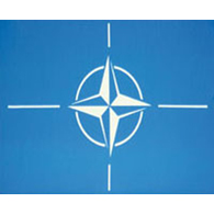 NATO: No early retreat from Afghanistan following bin Laden's death