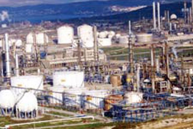 Closing Bid on Purchase of State Share in Turkish Petrochemical Holding Petkim does not Mean Approval of Agreement