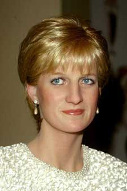 Stars come out for Diana