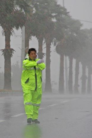 Девять жителей Тайваня стали жертвами последствий тайфуна, пришедшего с Филиппин