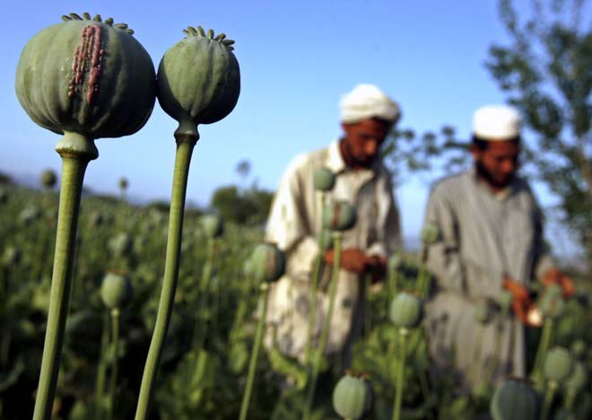 Over 1 million Afghans suffers from drug addiction: UN report