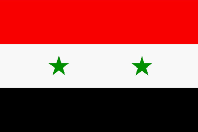 Syrian government adopts law to establish political parties