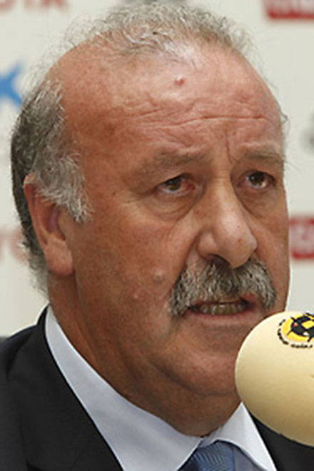 Del Bosque to continue on Spain bench after World Cup