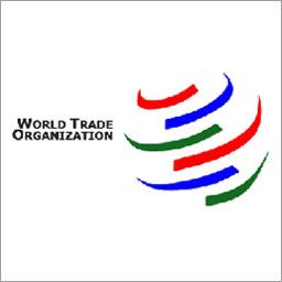 Georgian-Russian WTO negotiations yield no results