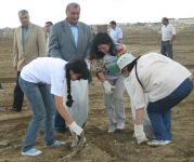 Azerbaijani Ecology and Natural Resources Ministry holds community work day under Caspian Week - Gallery Thumbnail