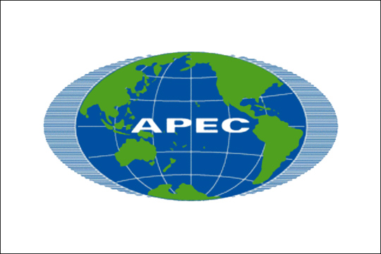 Russian sea ferry to become hotel for APEC summit