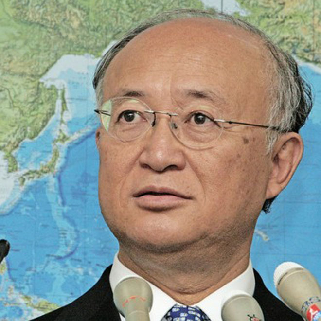 IAEA chief says agency cannot guarantee all Iran nuclear activities peaceful