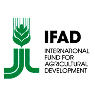 IFAD President: Each year $83bln needed to ensure food security in world