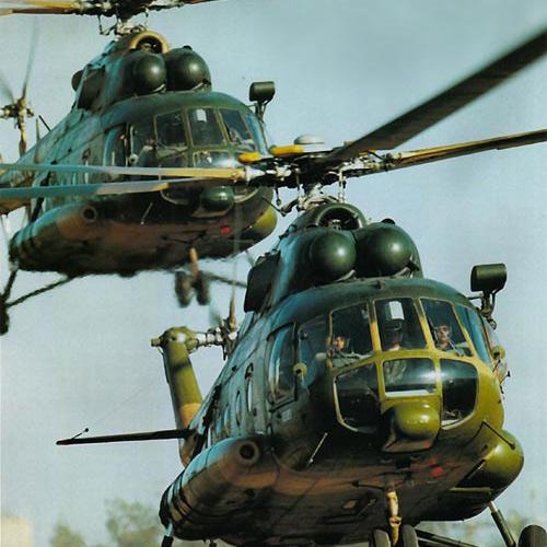 Азербайджанские вертолеты помогут россиянам в тушении пожаров
