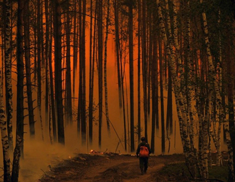 Fires brought under control in southern Russia