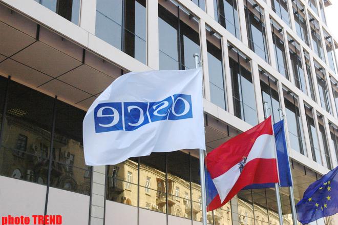 МЧС Азербайджана и ОБСЕ будут сотрудничать в устранении нефтяных разливов