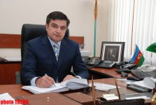 Azerbaijani official: New regulations adopted in visa system show effectiveness - Gallery Thumbnail