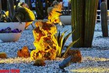 Bakı bulvarında Meksika əfsanəsi (FOTO) - Gallery Thumbnail