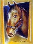 Ох, вы кони, мои кони (фотосессия) - Gallery Thumbnail