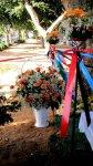 Азербайджанский флаг весом в 60 кг из живых цветов в Израиле - Марина Салахова (фотосессия) - Gallery Thumbnail