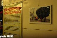 Талант детей с улиц Азербайджана в рисунках и фотографиях (фотосессия) - Gallery Thumbnail