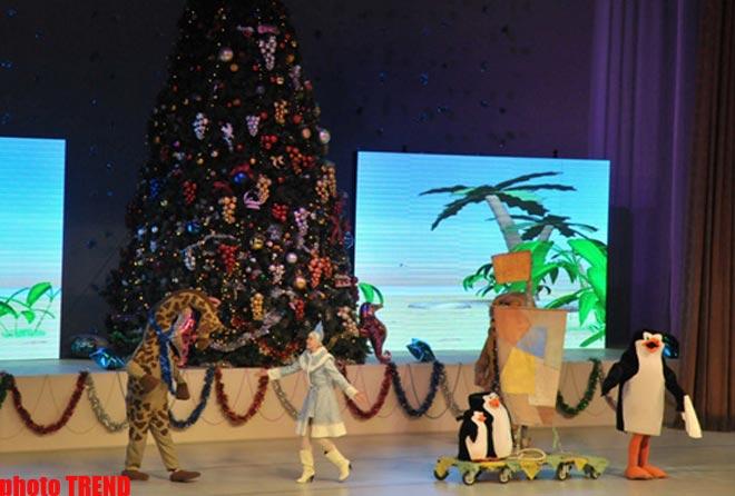 В Баку пингвины похитили Снегурочку (фотосессия) - Gallery Image