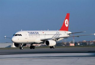 Turkish Airlines cancels Istanbul-New York flight due to blizzard