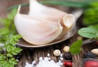 Chinese companies to process Uzbek garlic for further export to US and European countries