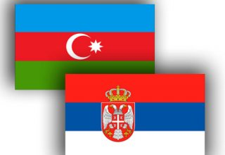 Azerbaijani, Serbian ruling parties discuss prospects of cooperation