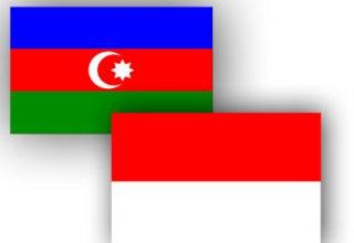Индонезия планирует сделать экономические предложения Азербайджану