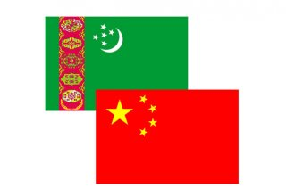 China ready to make efforts to further develop bilateral partnership with Turkmenistan