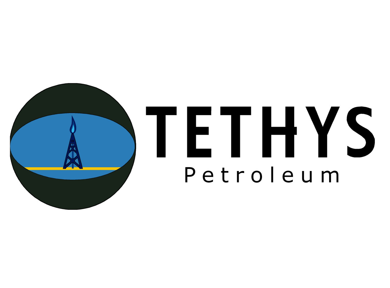 New CEO appointed to Tethys company