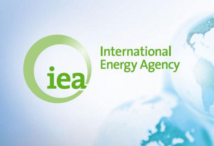 IEA announces growth rates and forecasts for oil production in 2021
