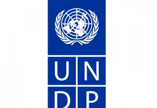 UNDP office in Turkmenistan opens tender on printing services