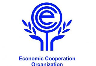 Iran hosts first meeting of ECO member states tax heads