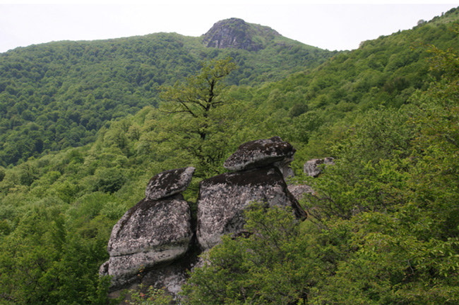 Azerbaijan discloses number of tourists in national parks in 2018