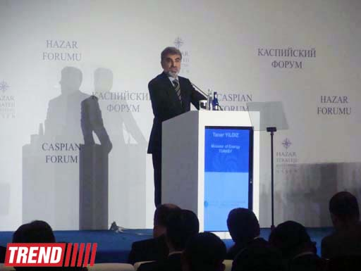 Deputy FM: Azerbaijan ready to provide its territory for transit of Central Asian gas (PHOTO) - Gallery Image