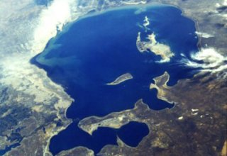 Turkmenistan working to resolve Aral Sea crisis