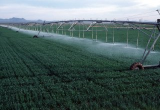 Uzbekistan to pump additional water for irrigation from Tajikistan