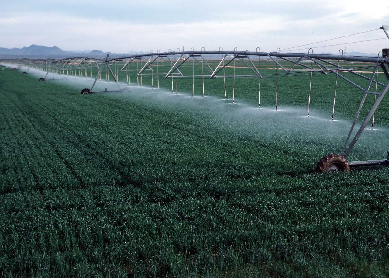 Uzbek agriculture ministry to create system to monitor irrigated lands
