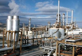 Petrochemical industry sector developing in Iran