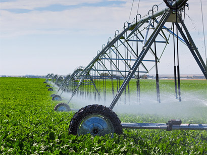 Azerbaijan allocated additional funds for irrigation and water supply