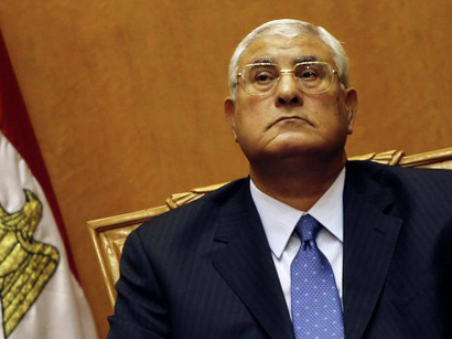 Egypt's interim president calls for reconciliation