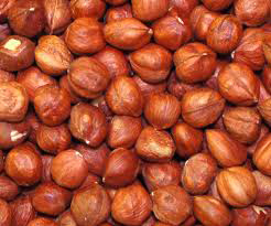 Azerbaijan adopting foreign experience in hazelnut production, processing