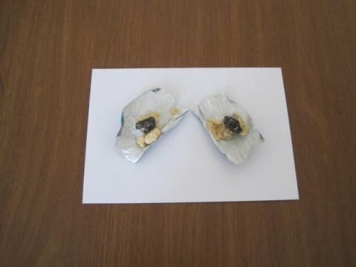 Bakıda İstintaq təcridxanasına gətirilən sovqatdakı konfetdə narkotik maddə varmış (FOTO)