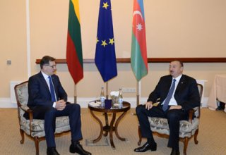 President Ilham Aliyev meets Lithuanian Premier (PHOTO)