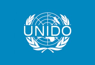 Kazakhstan needs to ensure environmental sustainability of extractive industries - UNIDO