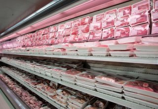 Kazakhstan's Turkestan to export equipment, meat products to Uzbekistan