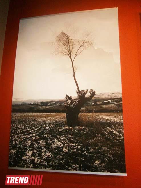Поэма между людьми и пейзажами - Михай Потырнике в Баку, молдавский фотохудожник (ФОТО) - Gallery Image