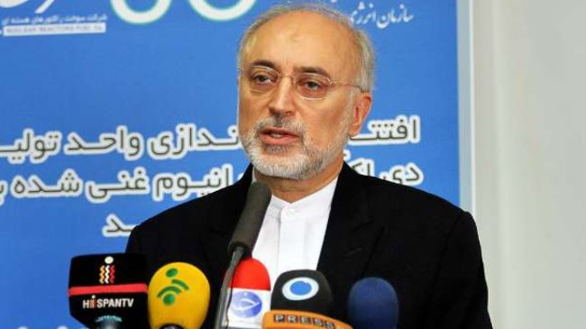 Iran nuclear chief optimist about nuclear negotiations