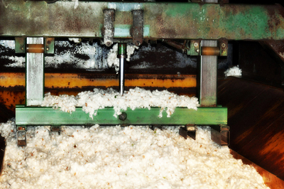 Turkmenistan's Serdar cotton-spinning mill produces large volume of products